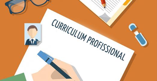 Modelo de curriculum 2019