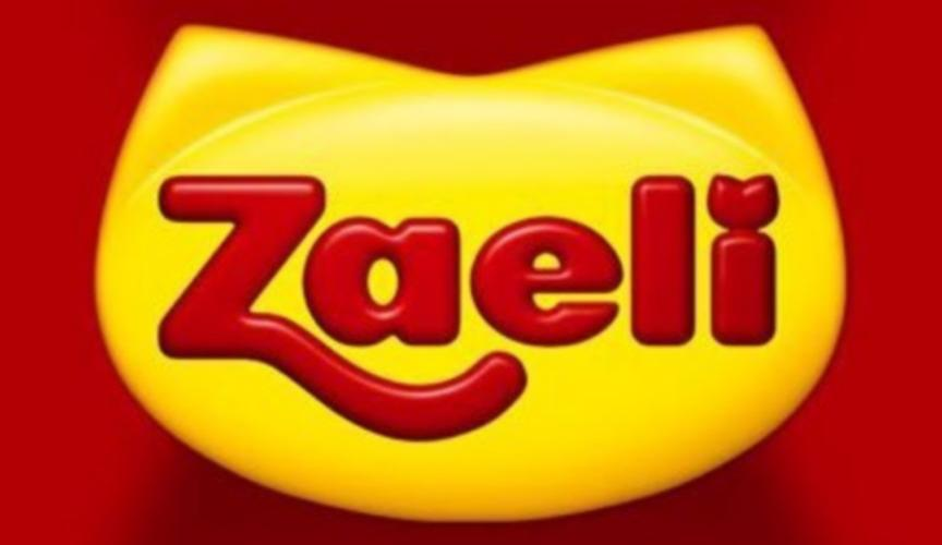 Trabalhe conosco Zaeli